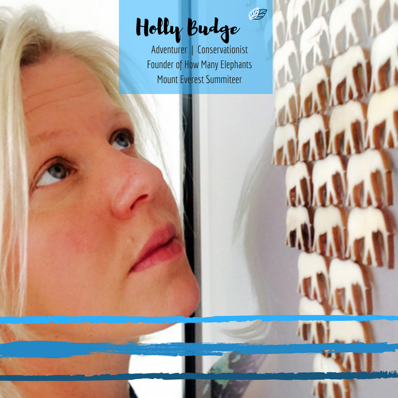 Copy of Holly Budge