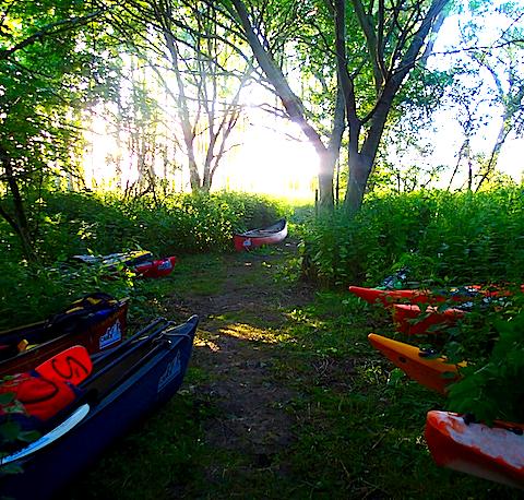 boats in woods.jpg