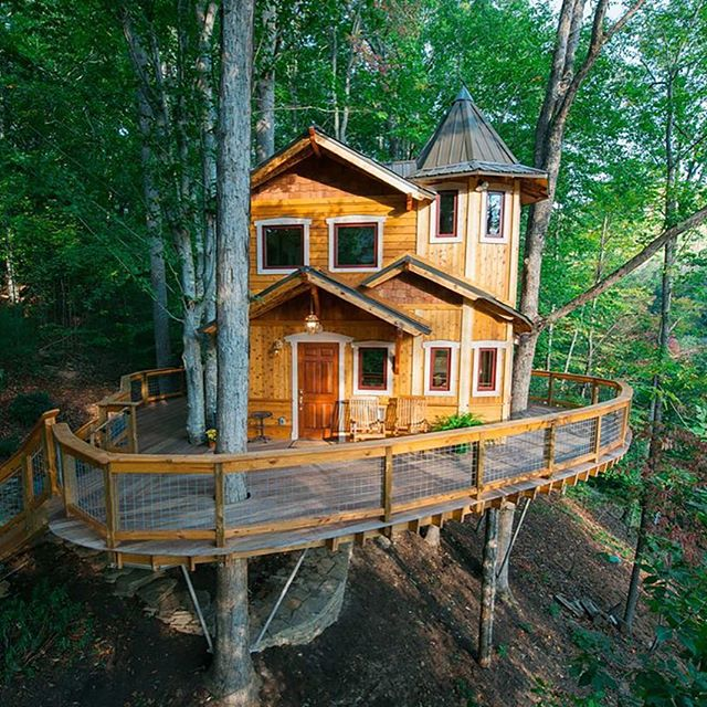 Treehouse dreams. The Carolina Jewel costs a pretty penny to rent, but it's ok to lust, right?