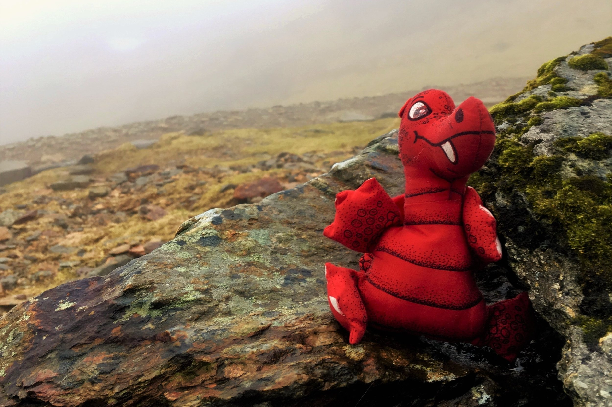 Red dragon mascot sits on wet, mossy rocks in a foggy mountain landscape in Snowdonia.