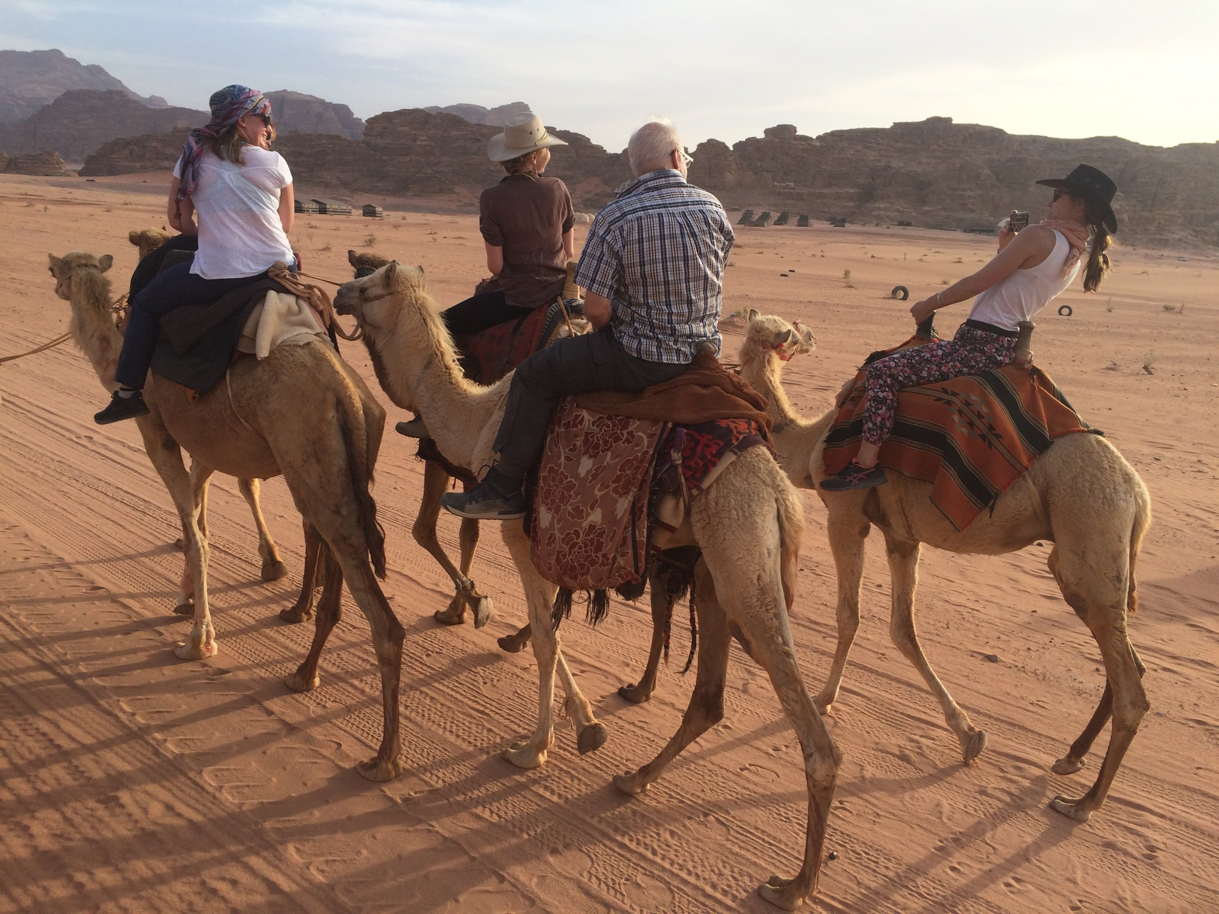 Wadi RUm Camels at Sunset2.JPG