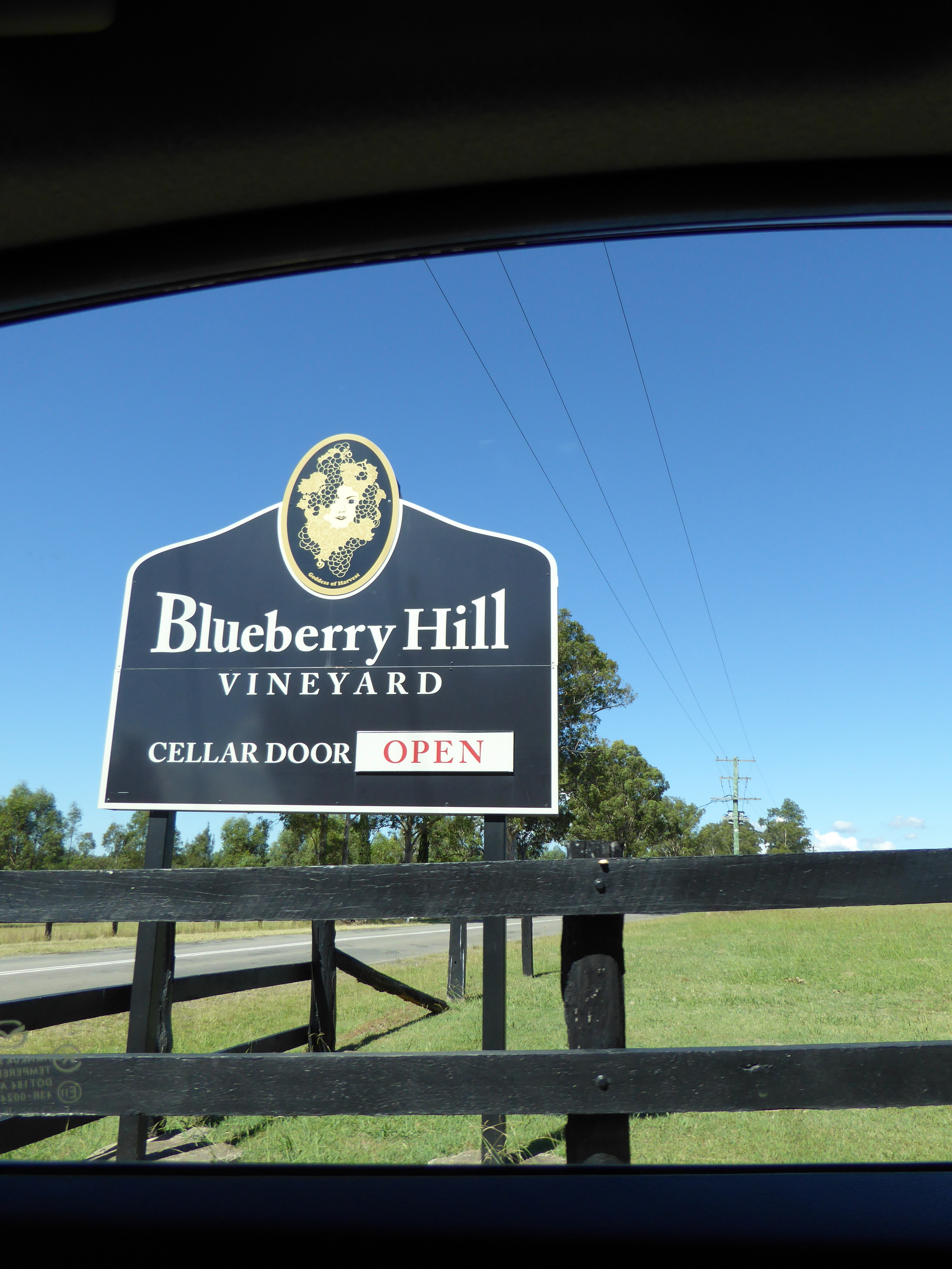 Blueberry Hill Vineyard