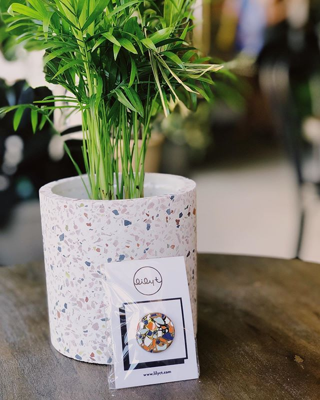 Heads up Terrazzo heads, you can buy this lovely pairing of my terrazzo pin and this terrazzo pot from @propagatesac. 🌴  Palm Not included but you probably wanna pick one of those up while you're at it. • • #creative #art #artist #illustrator #design #designer #916 #sacramento #sac #maker #shoplocal #local #maker #terrazzo #houseplants #propagatesac #palm #houseplant #pins #enamelpins #patches #pingamestrong