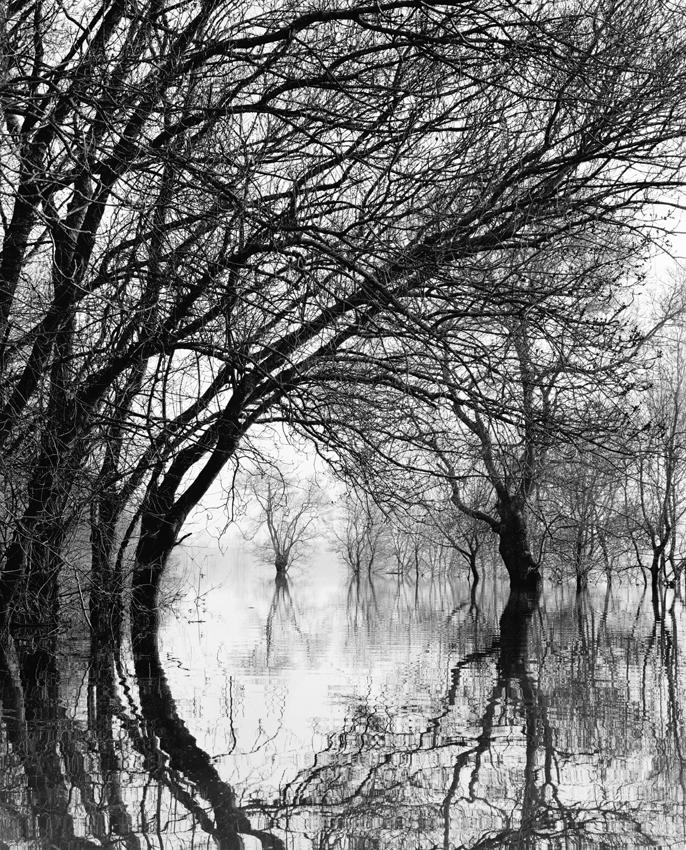 """""""L'eau Grande 1,"""" 2001, photograph, 24x20 in."""