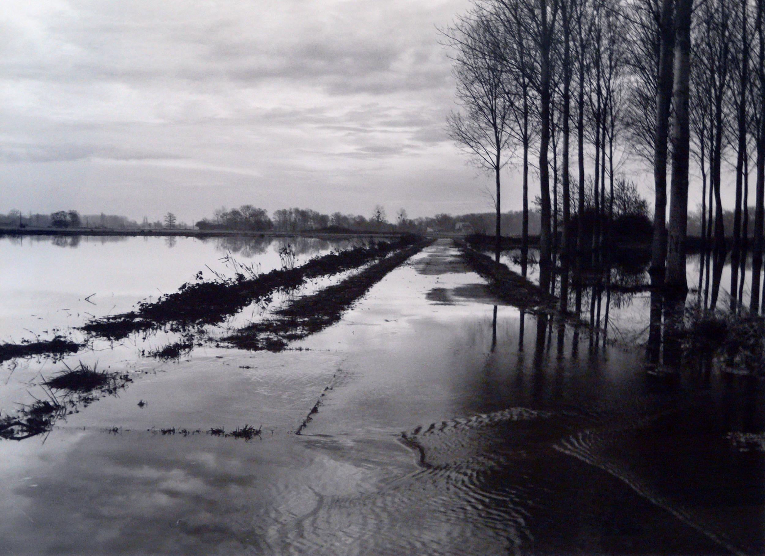 """""""L'eau Grande 5,"""" 2001, photograph, 20x24 in."""