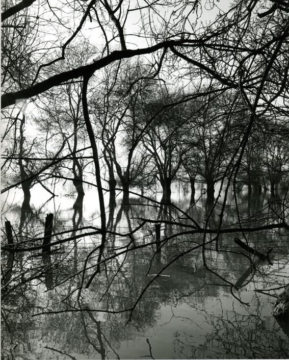 """""""L'eau Grande 12,"""" 2002, photograph, 24x20 in."""