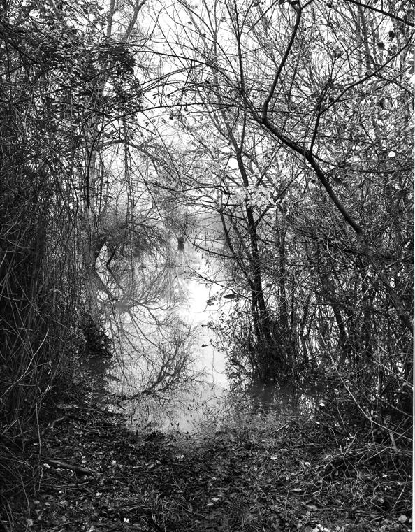 """""""L'eau Grande 16,"""" 2002, photograph, 24x20 in."""