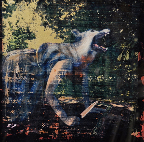 """""""Lycaon,"""" 2012, cyanotype gum bichromate and paint on glass, 12x12 in."""