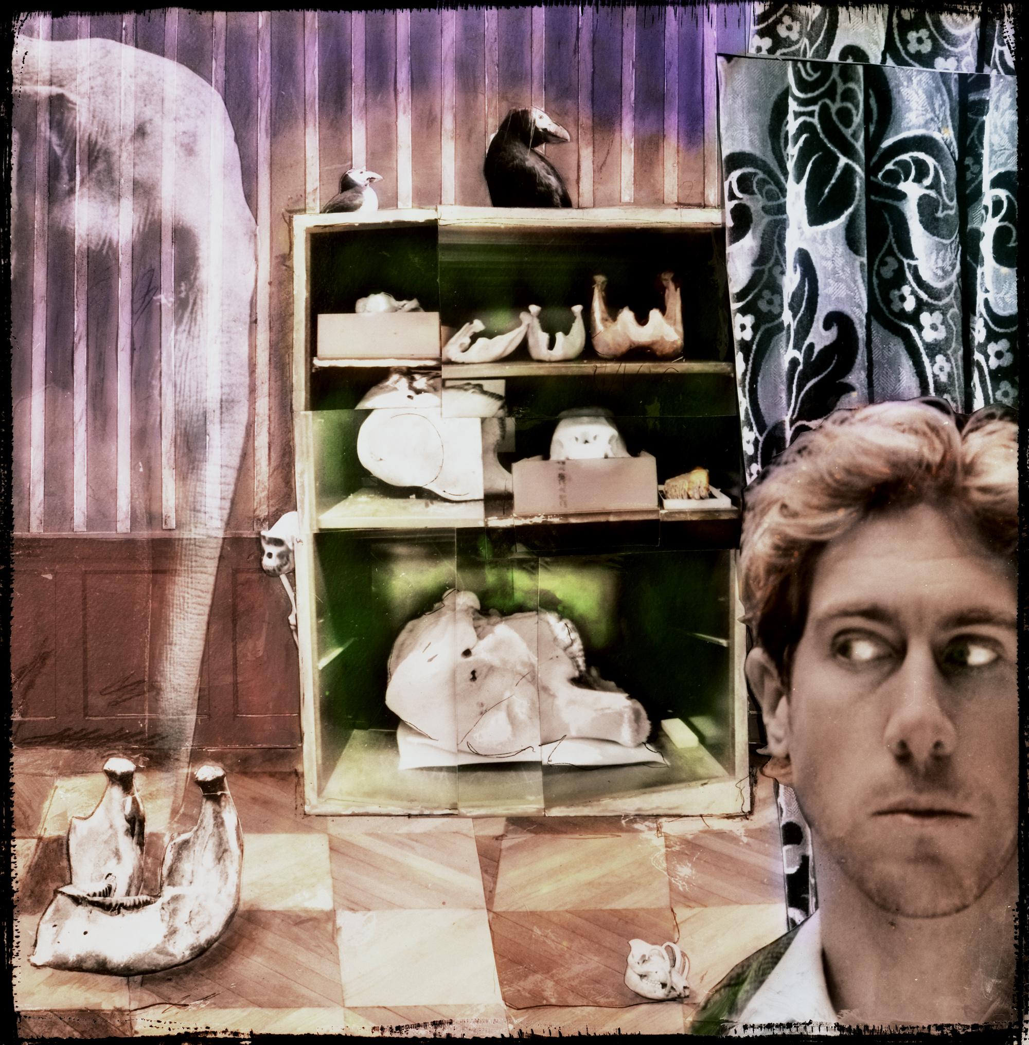 """""""Elephant Memories,"""" 2003, c-print, 15x15 in."""