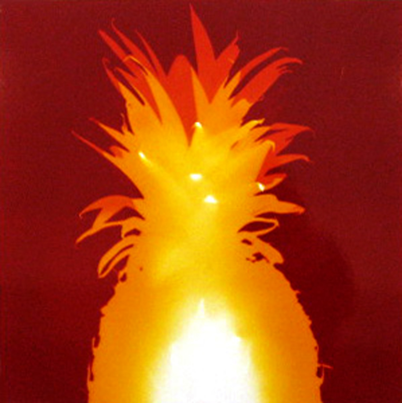 van Blerk, %22Pineapple%22, 2006, Heliogram, 8.75x8.75%22 copy.jpg
