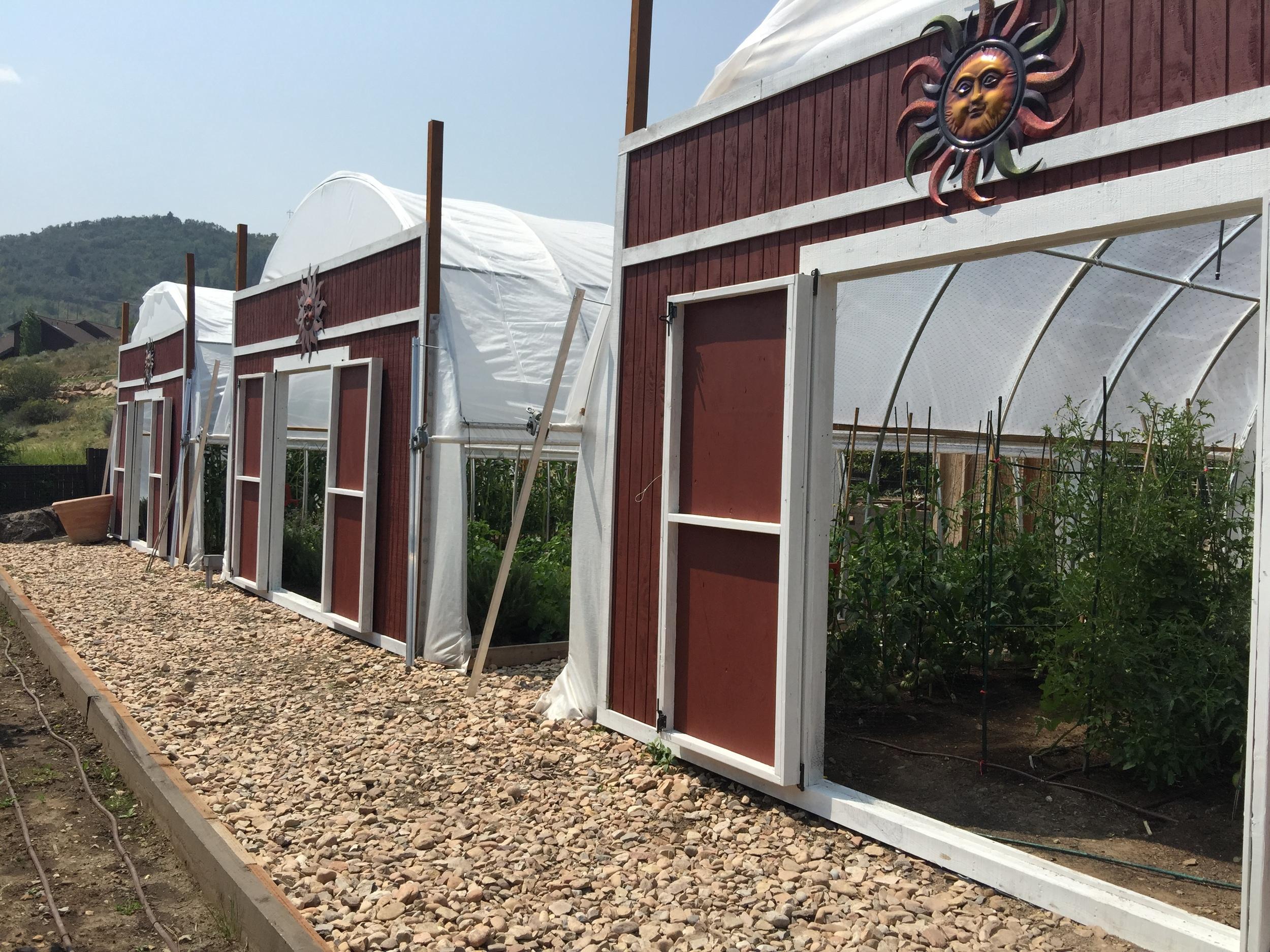Bill White Farms Greenhouses