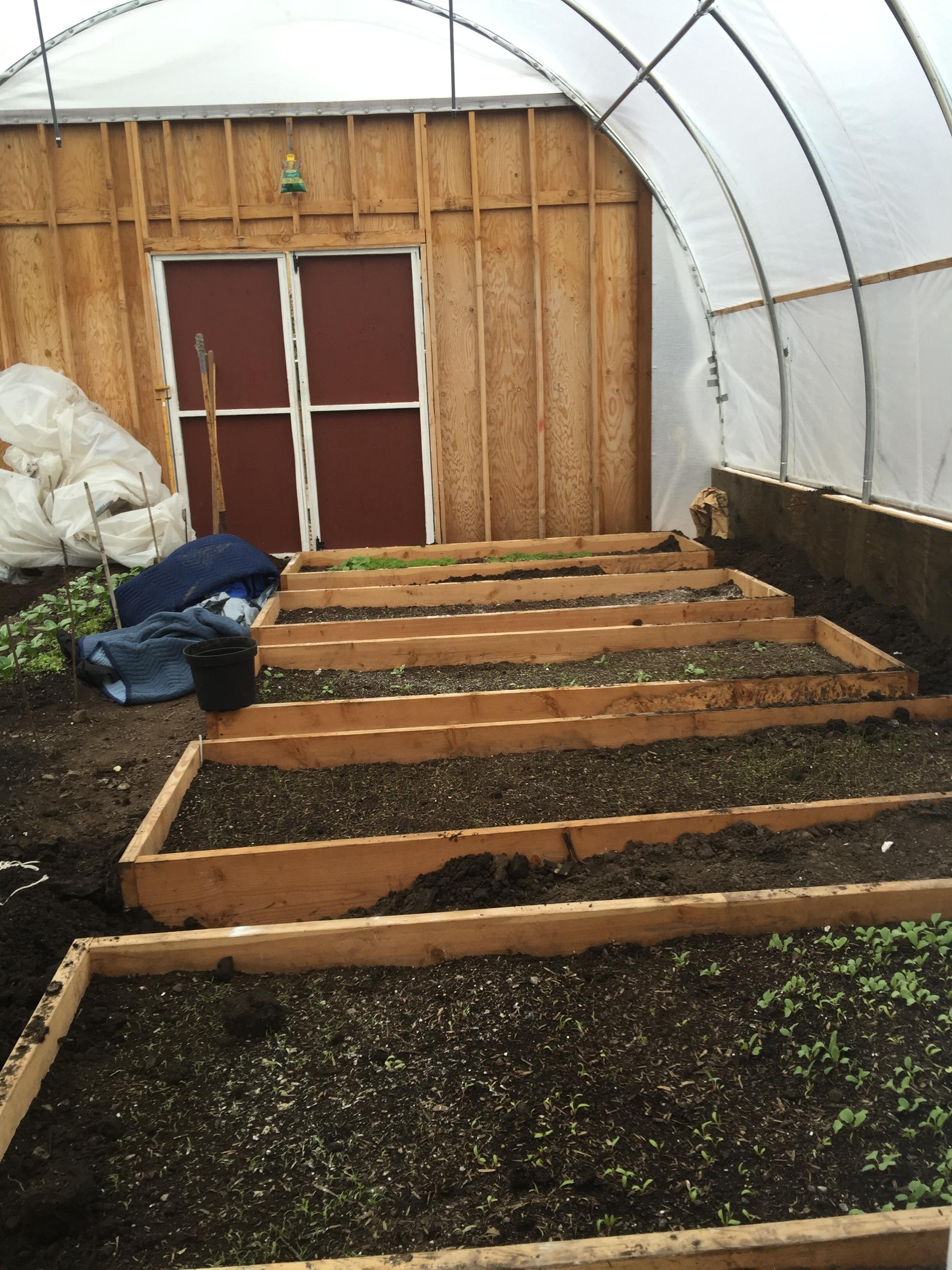 Winter Prep for Green Houses
