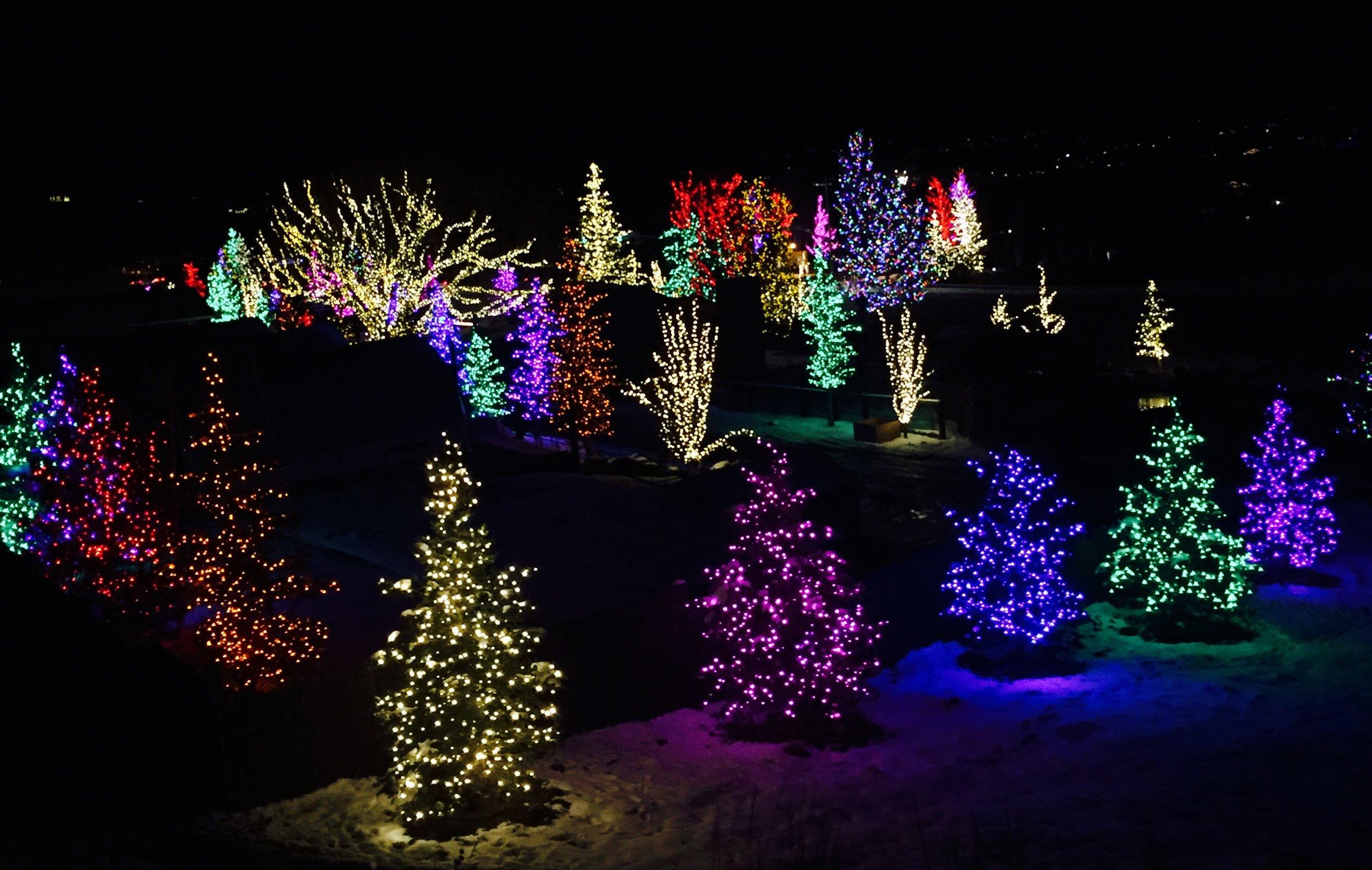 Farm Lights.jpg