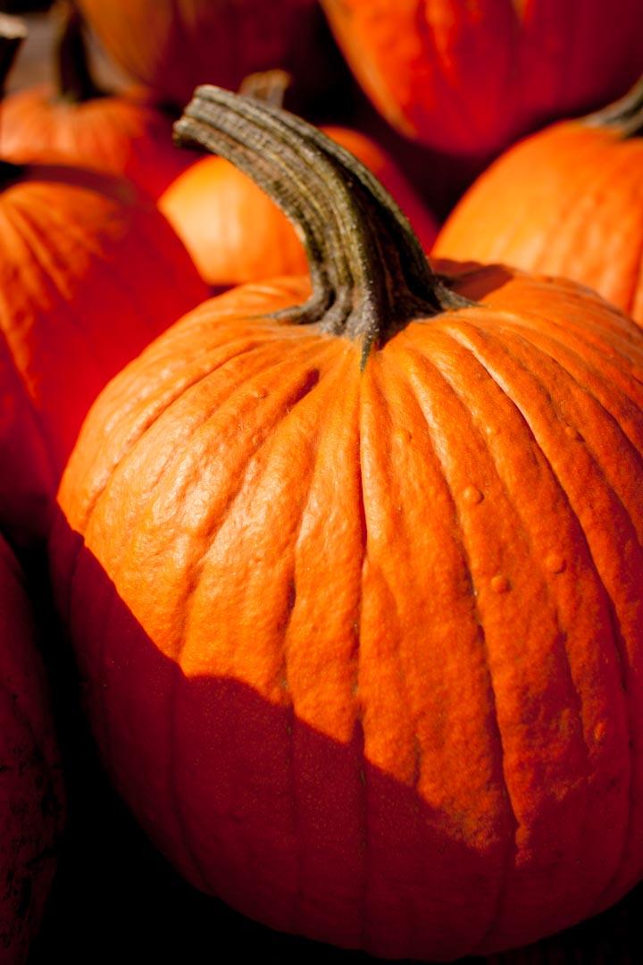 15-10-01_14-18-53_-rts-IMG_5600.jpg