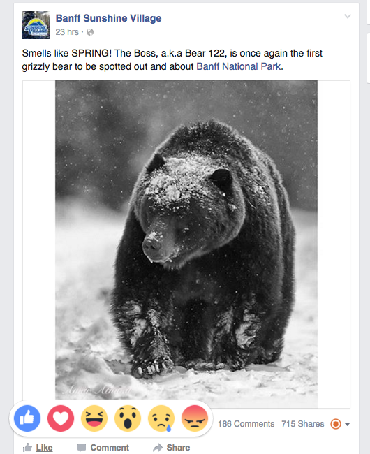 An example of a post that could warrant a more specific reaction from users. The 'Wow' reaction could be appropriate in this case. Taken from the Sunshine Village Facebook page. Image courtesy of Facebook.