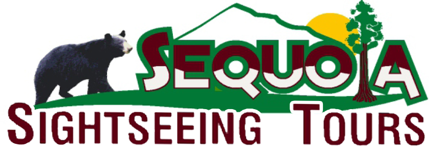 sequoia sightseeing logo I like.jpg