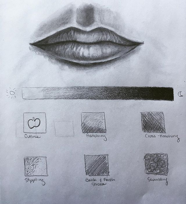 Today's art lesson in graphite pencils! #gradient #outline #hatching #crosshatching #stippling #backandforth #scumbling #realism #realistic drawing #lips #cupidsbow #artpiques #art #artforkids #artforadults #newyorkcity #newyork #artlesson #artclass #practice #drawingexercise #lips