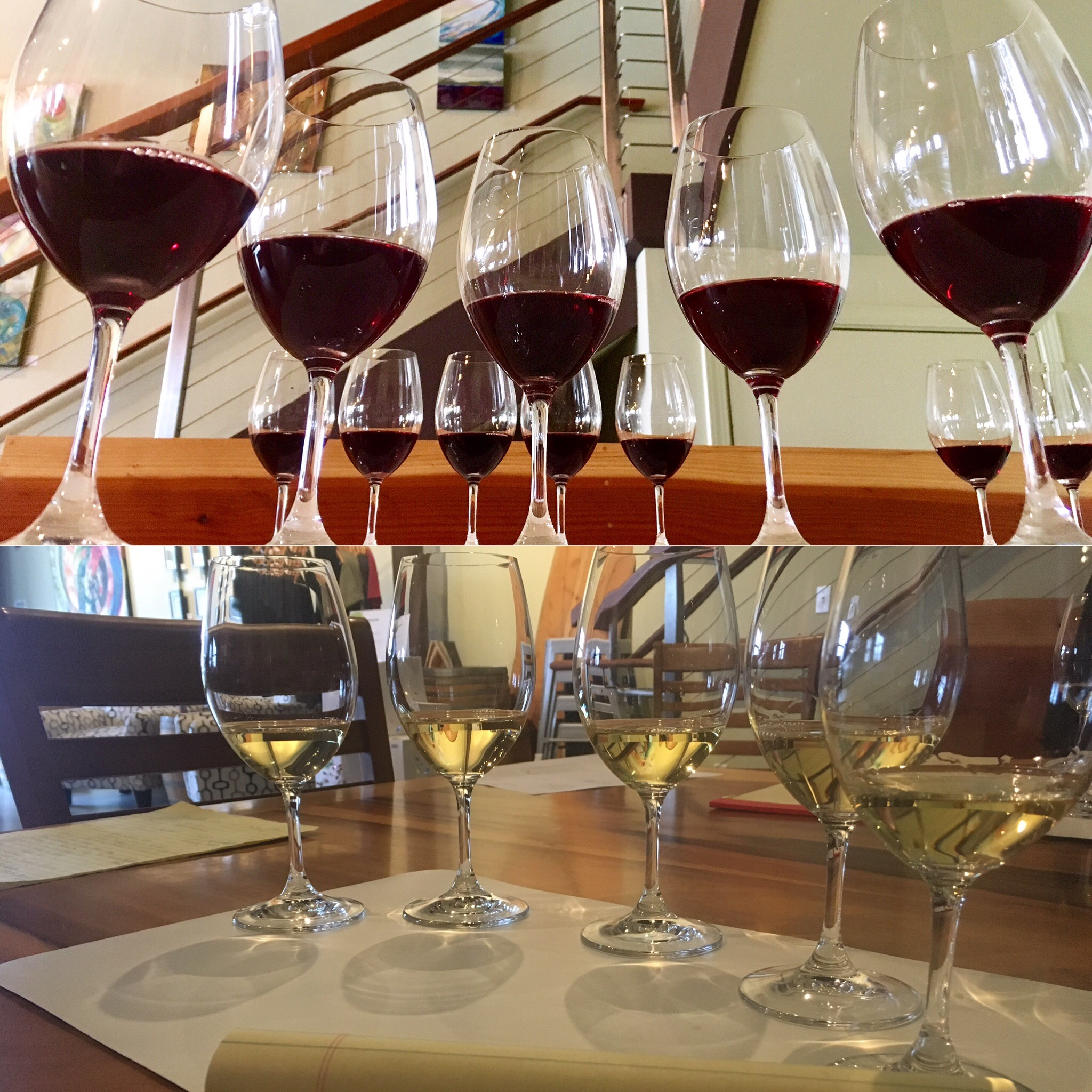 Californian Pinot Noir & Chardonnay #blindtasting #comparative