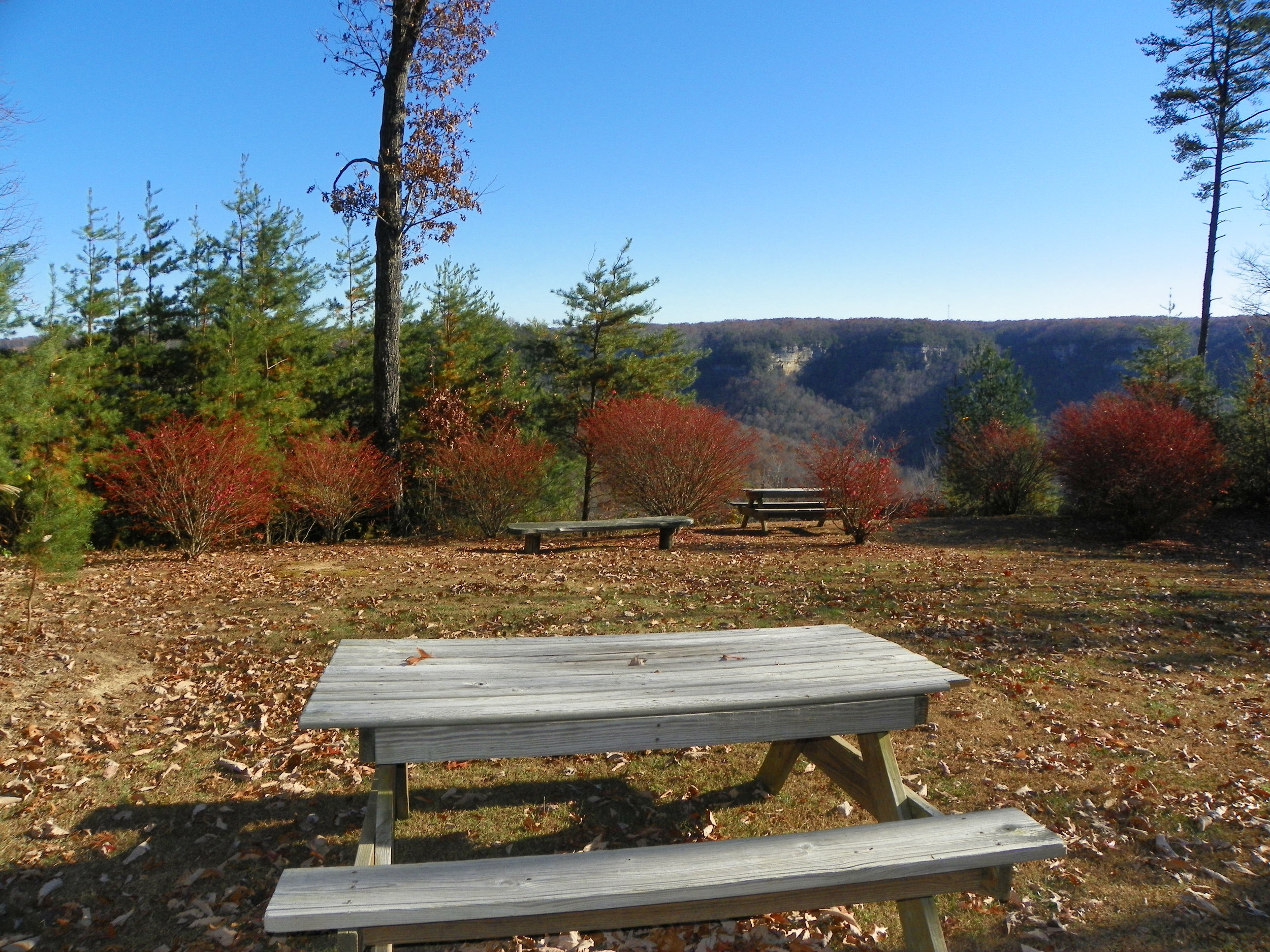 Family-friendly views at Pointe View Lodge