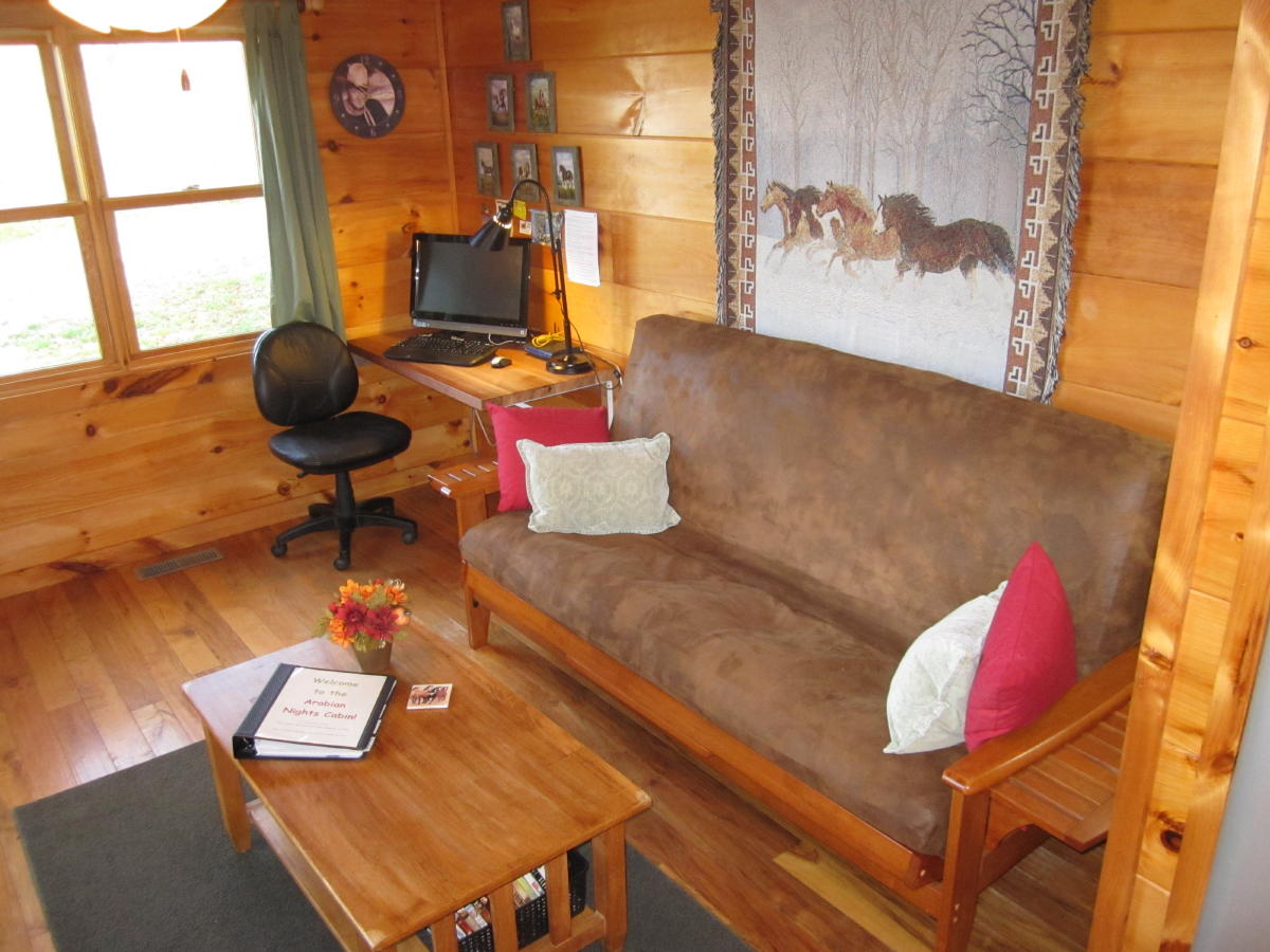 Comfortable living room at Arabian Nights cabin.