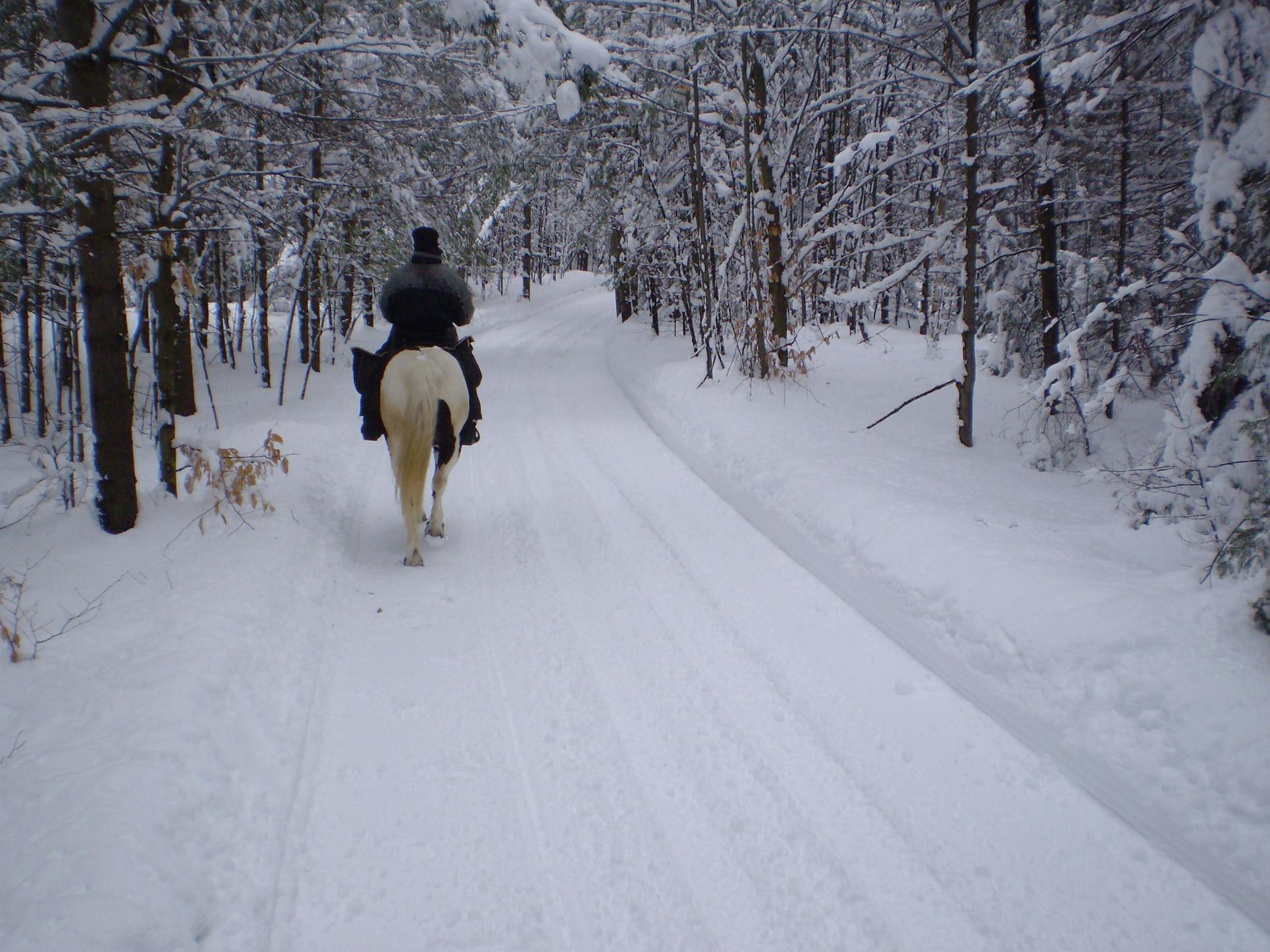person riding a horse through the snow during winter