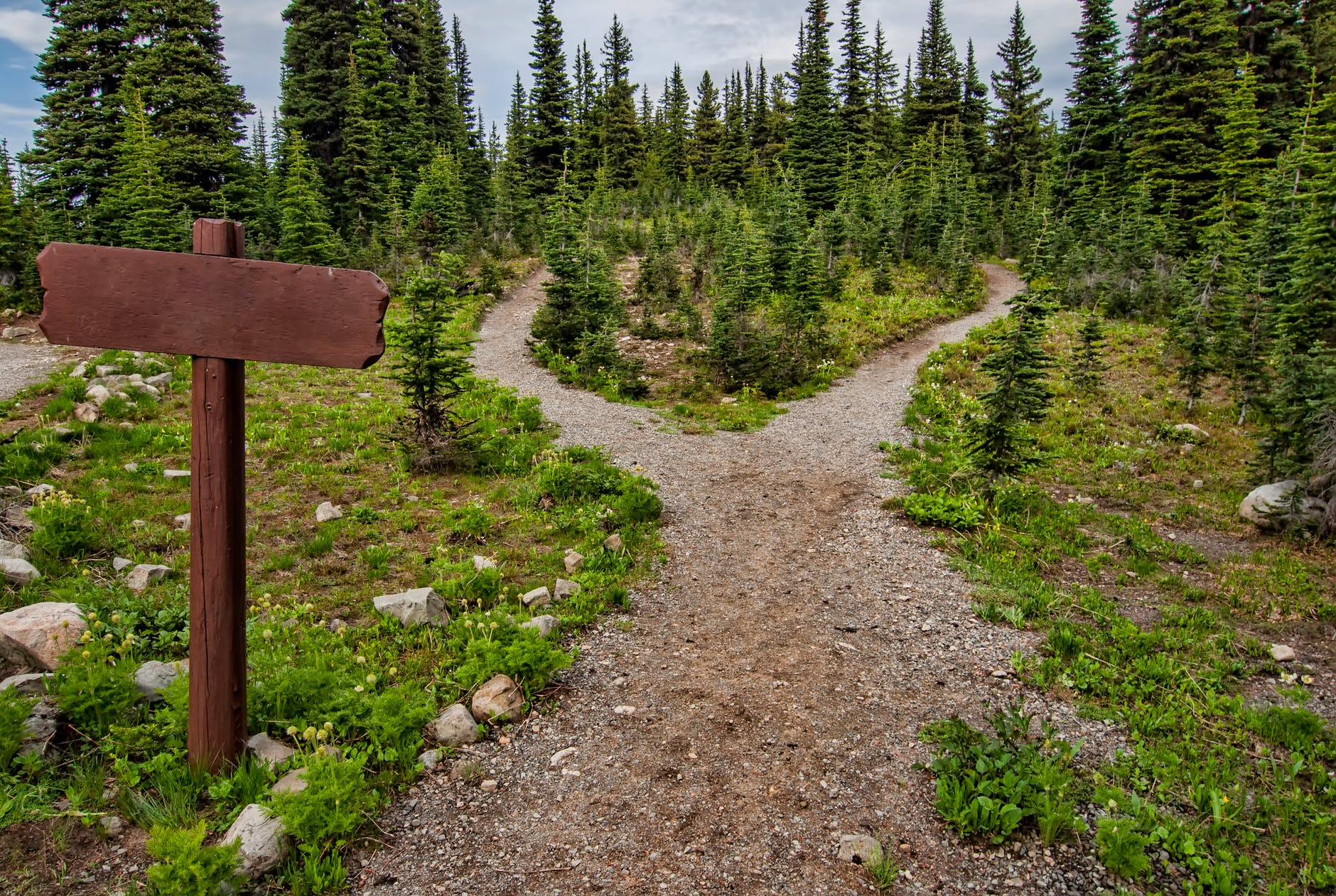 hiking trailhead that splits into two trails