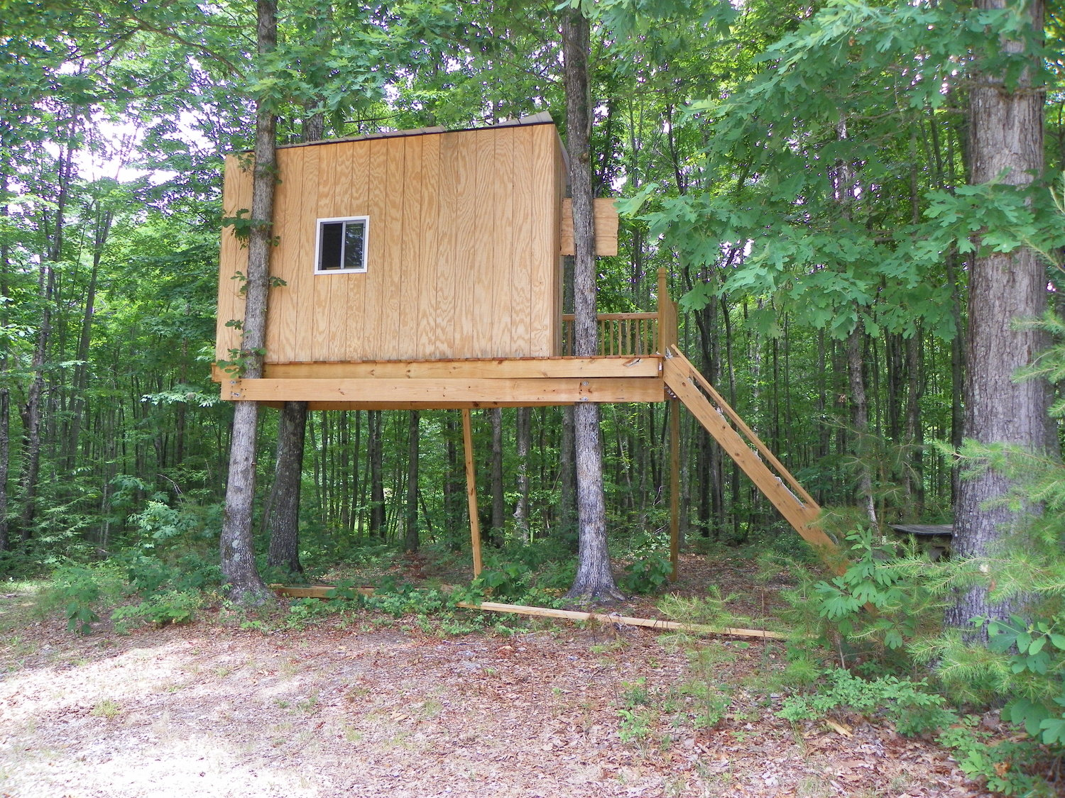 kid-friendly treehouse for vacation