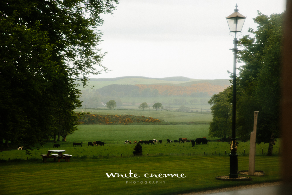 White Cherrie, Edinburgh, Natural, Wedding Photographer, Amy & Allen previews (20 of 62).jpg