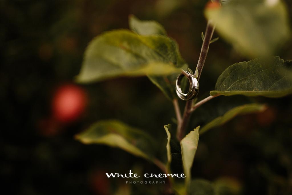 White Cherrie, Edinburgh, Natural, Wedding Photographer, Vicki & Steven previews-3.jpg