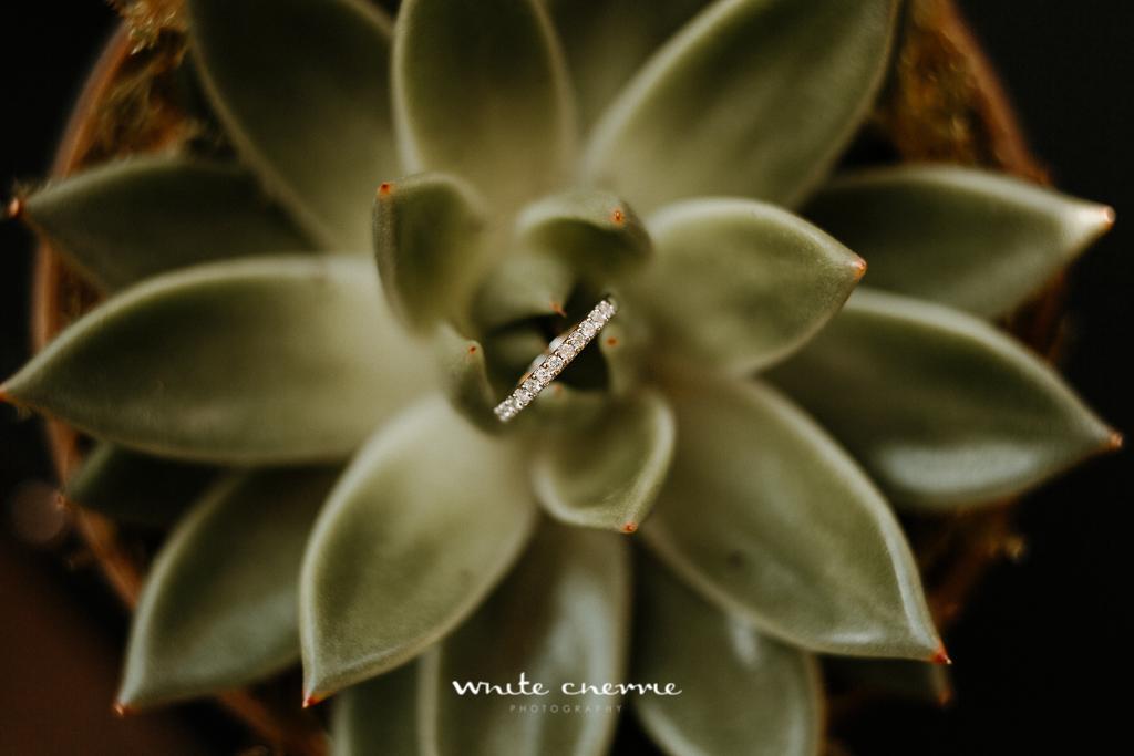 White Cherrie, Edinburgh, Natural, Wedding Photographer, Steph & Scott previews-15.jpg