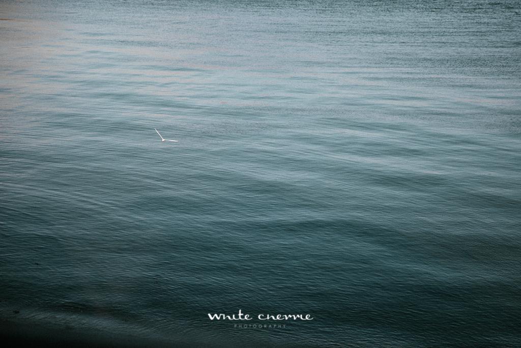 White Cherrie - Kara & Paul preview-29.jpg
