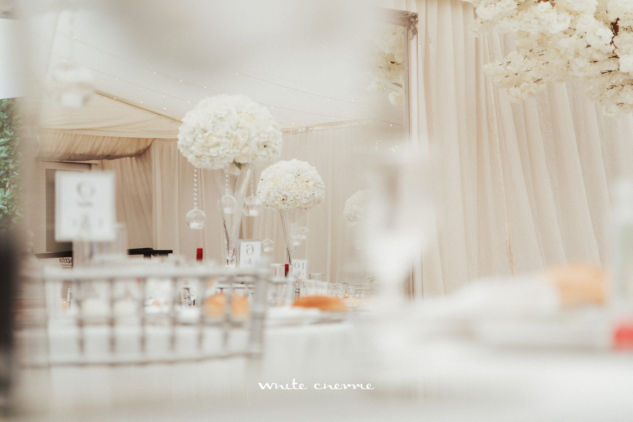 White_Cherrie-Lee_Cheryl-65.jpg