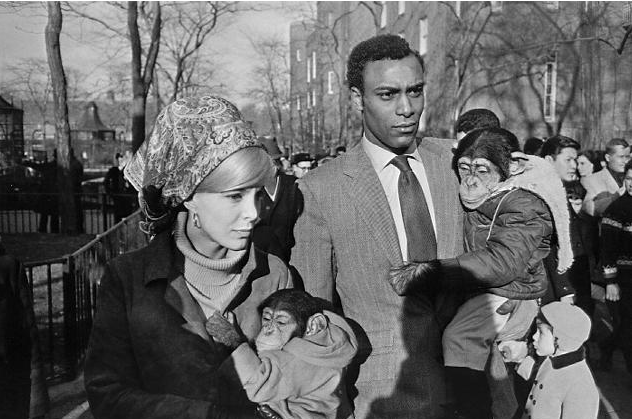 Garry Winogrand, Central Park Zoo, 1955