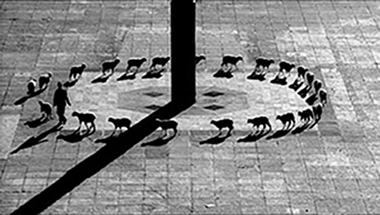 Patriotic tales, Mexico City, 1997