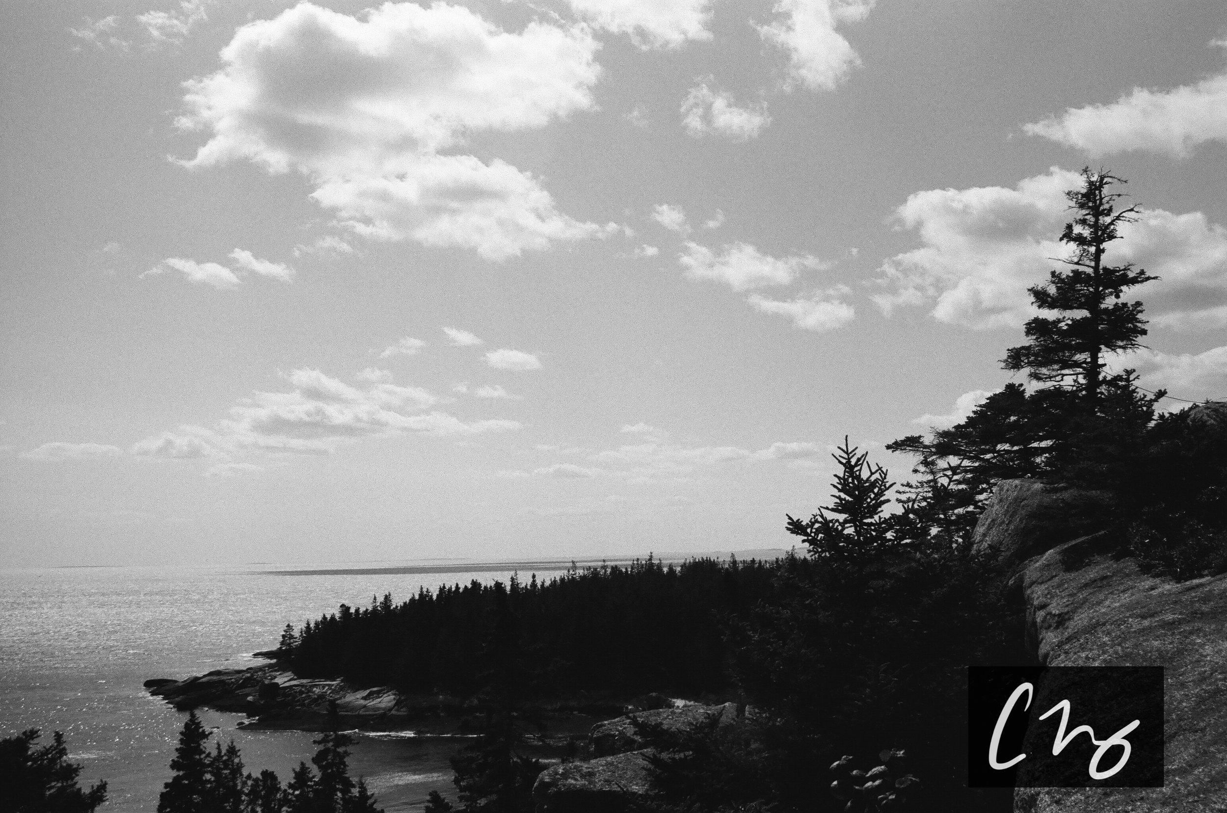 Wooden Islands-1-8.jpg
