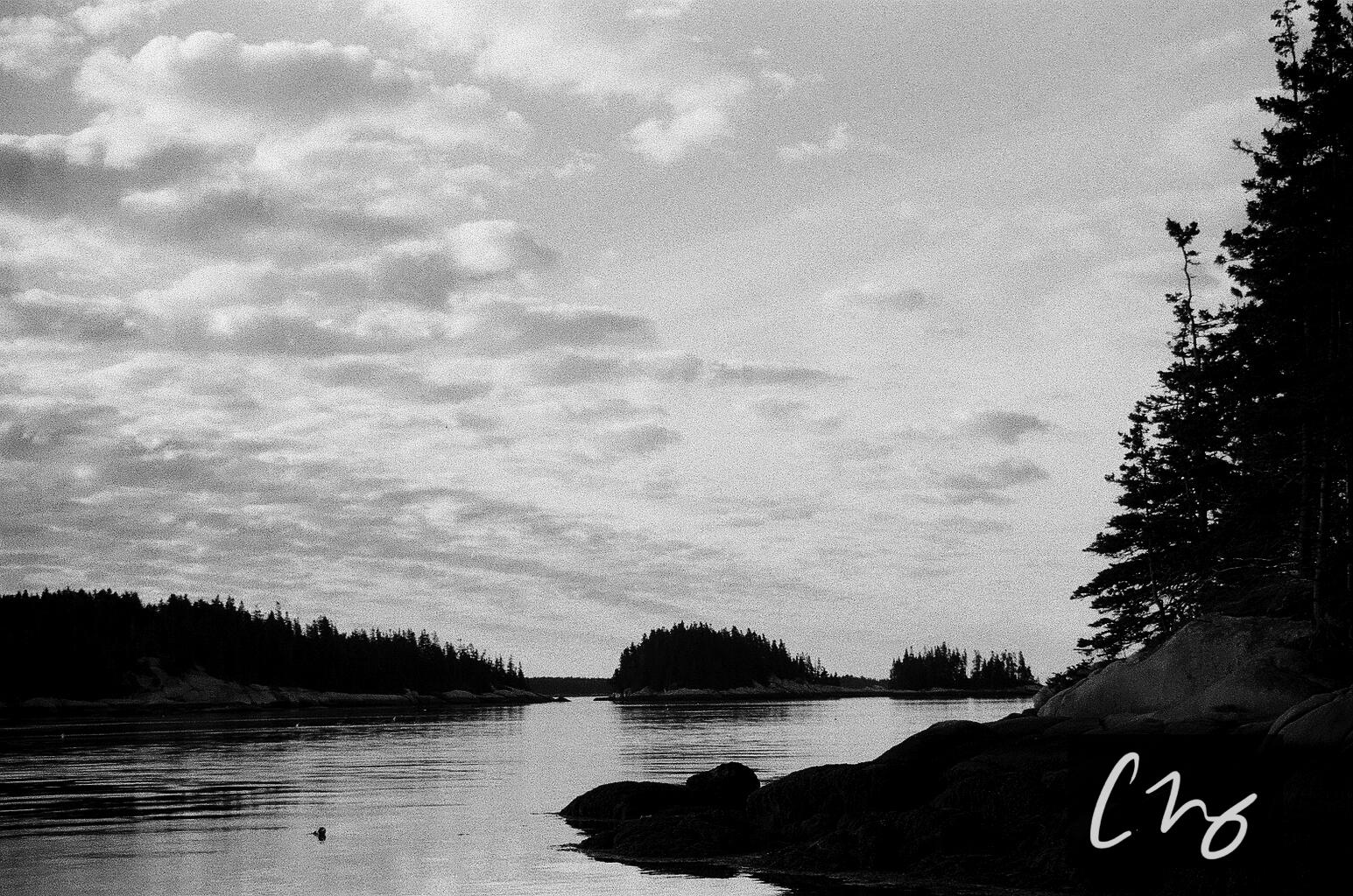 Wooden Islands-9-2.jpg