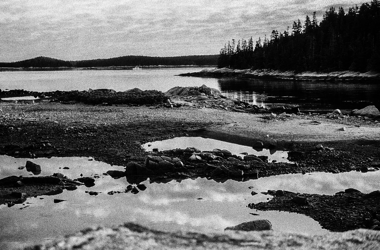 Wooden Islands-1-9.jpg