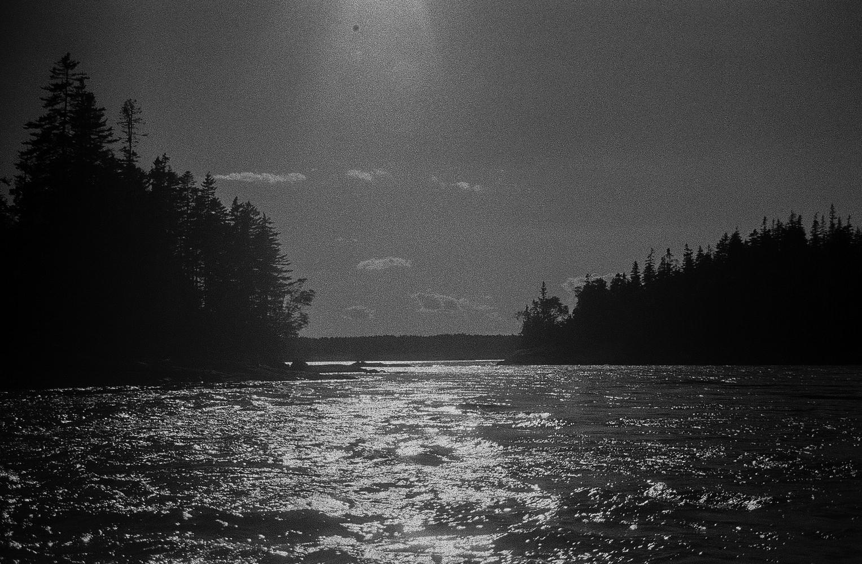 Wooden Islands-1-7.jpg