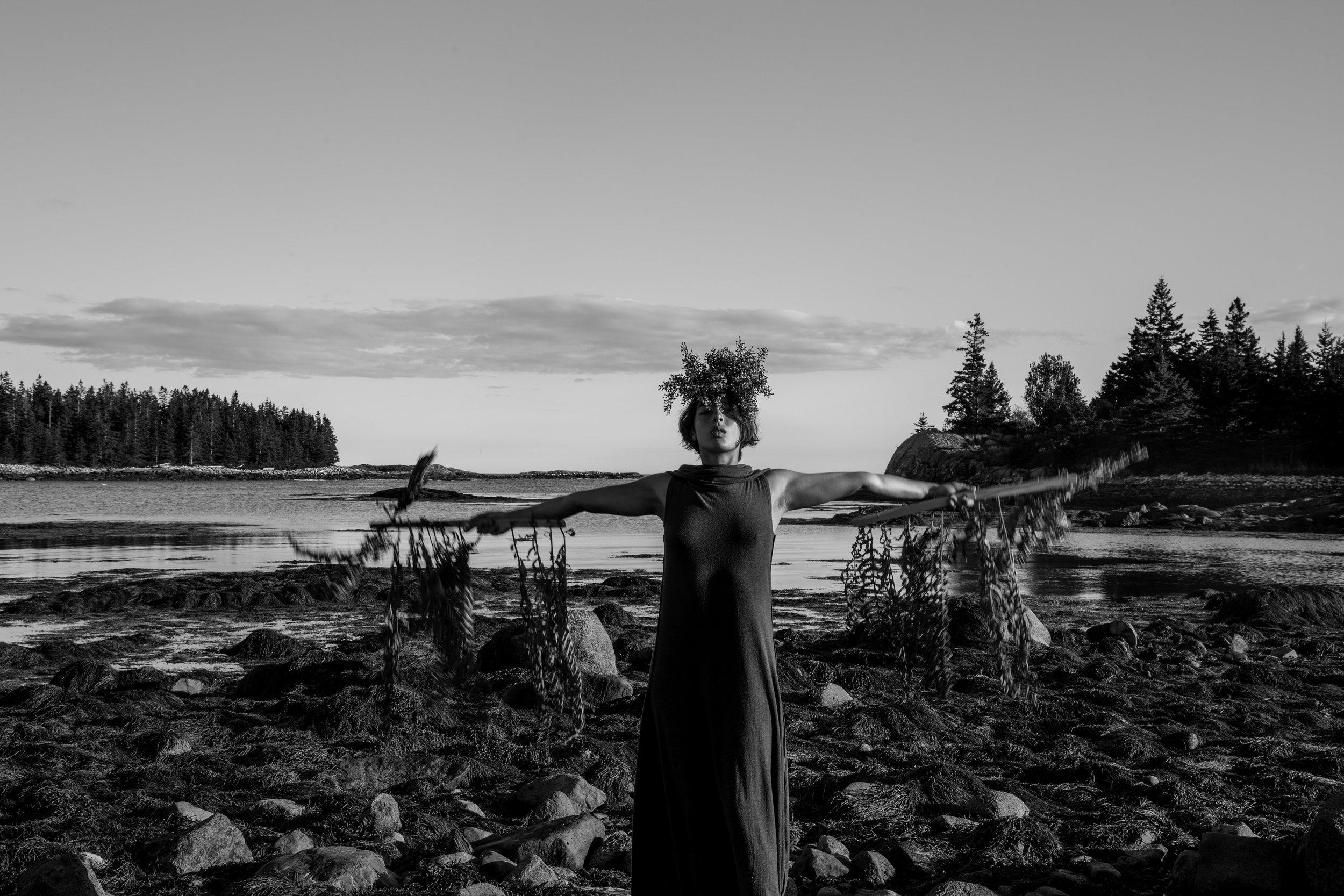 Wooden Islands-1-4.jpg
