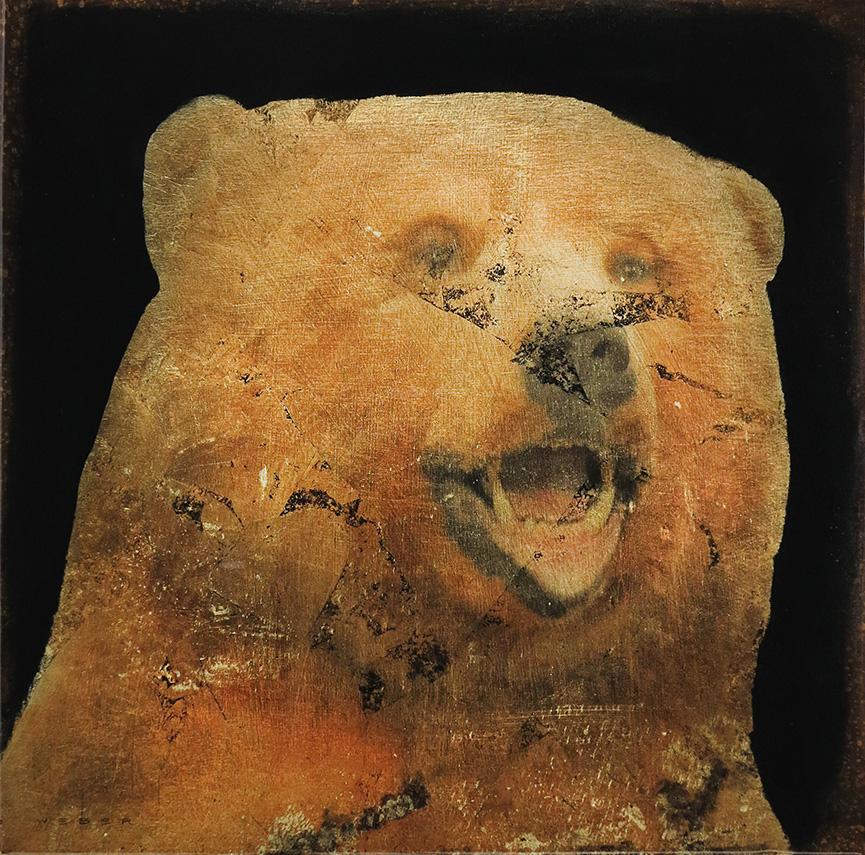 BEAR, 12 X 12
