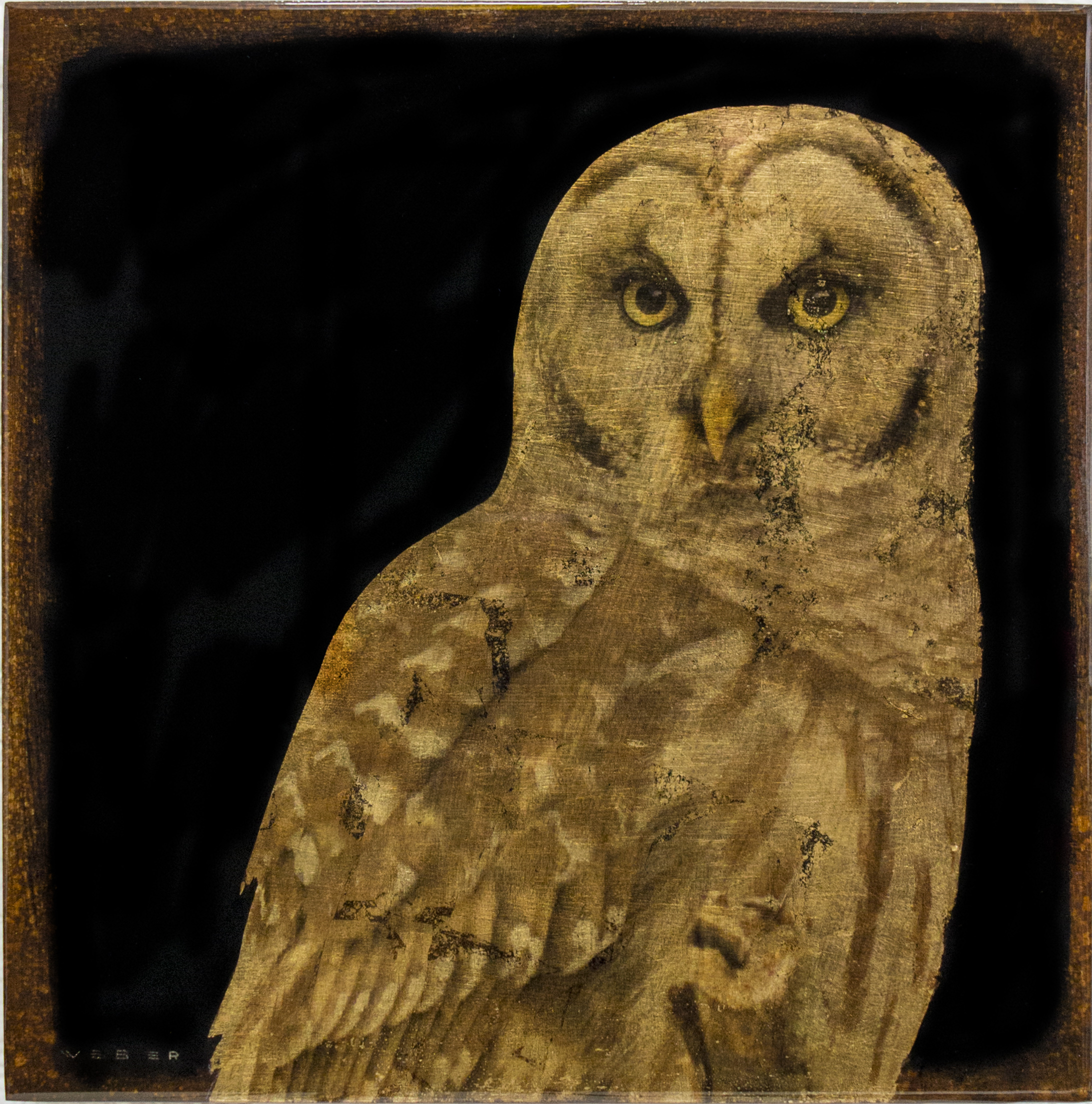 OWL, 12 X 12