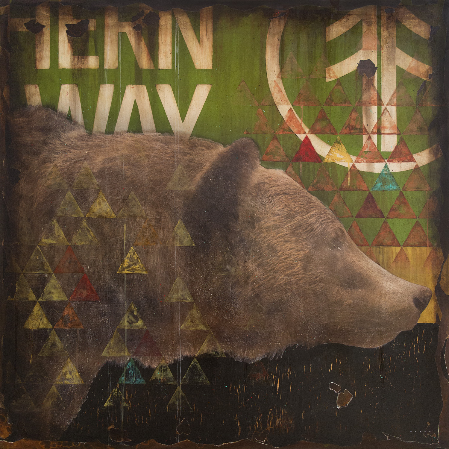 WESTERN GRIZZLY, 48 X 48, SOLD