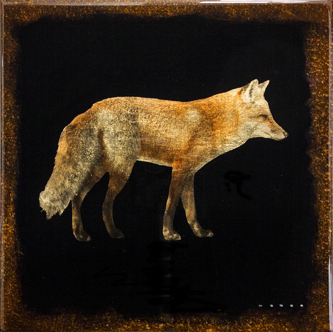 FOXY, 12 X 12
