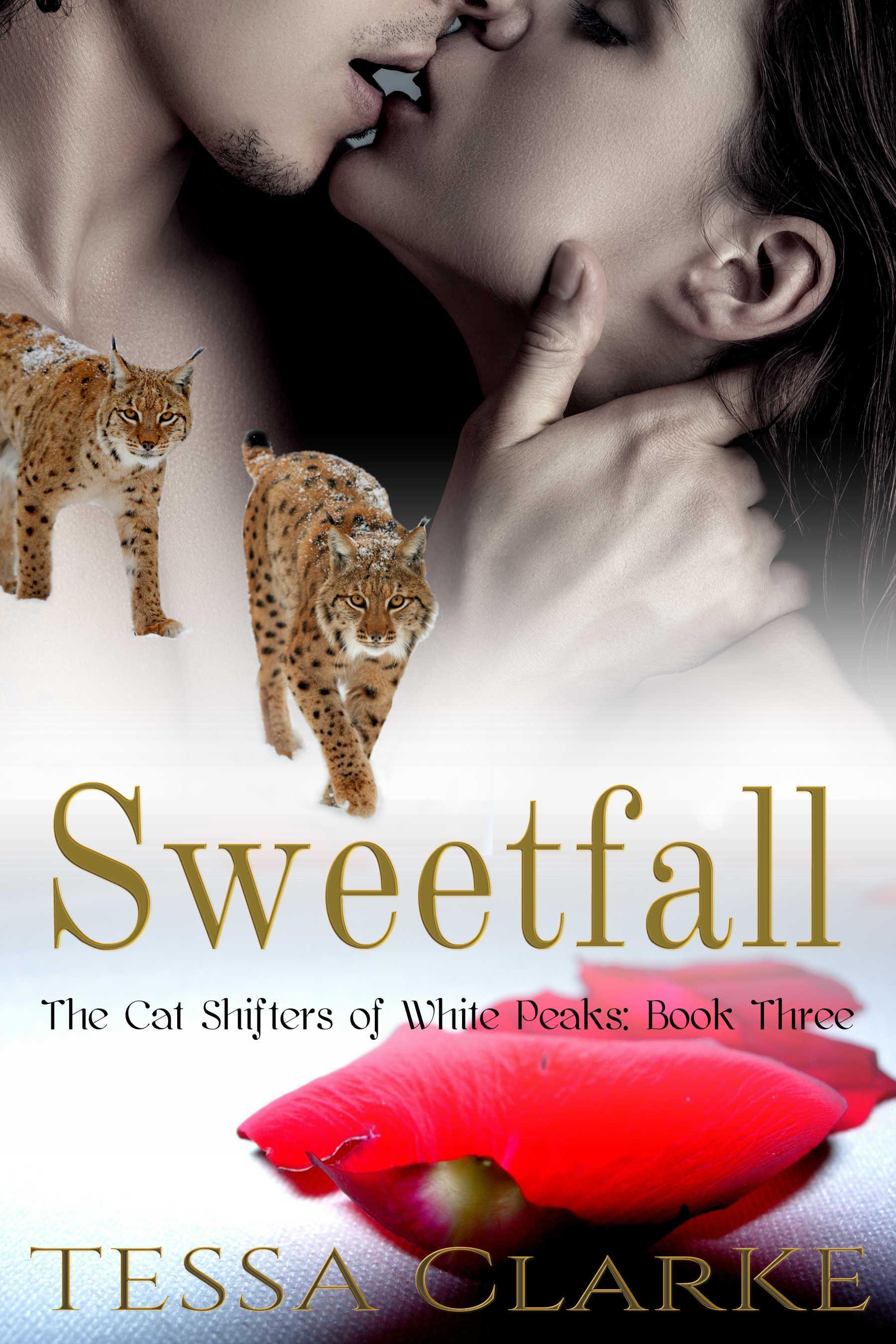 Sweetfall Cover.jpg