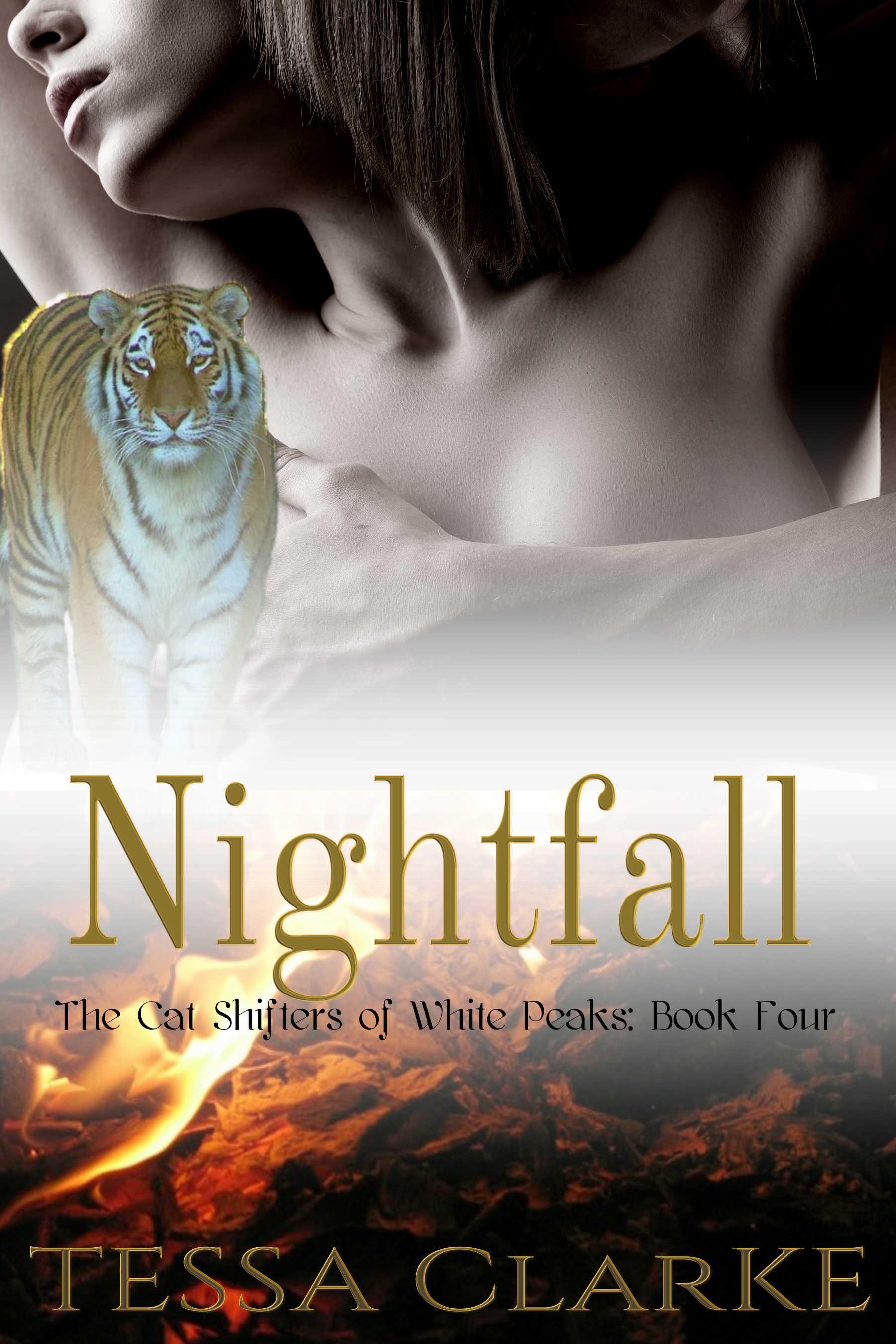 Nightfall 6 bigger.jpg