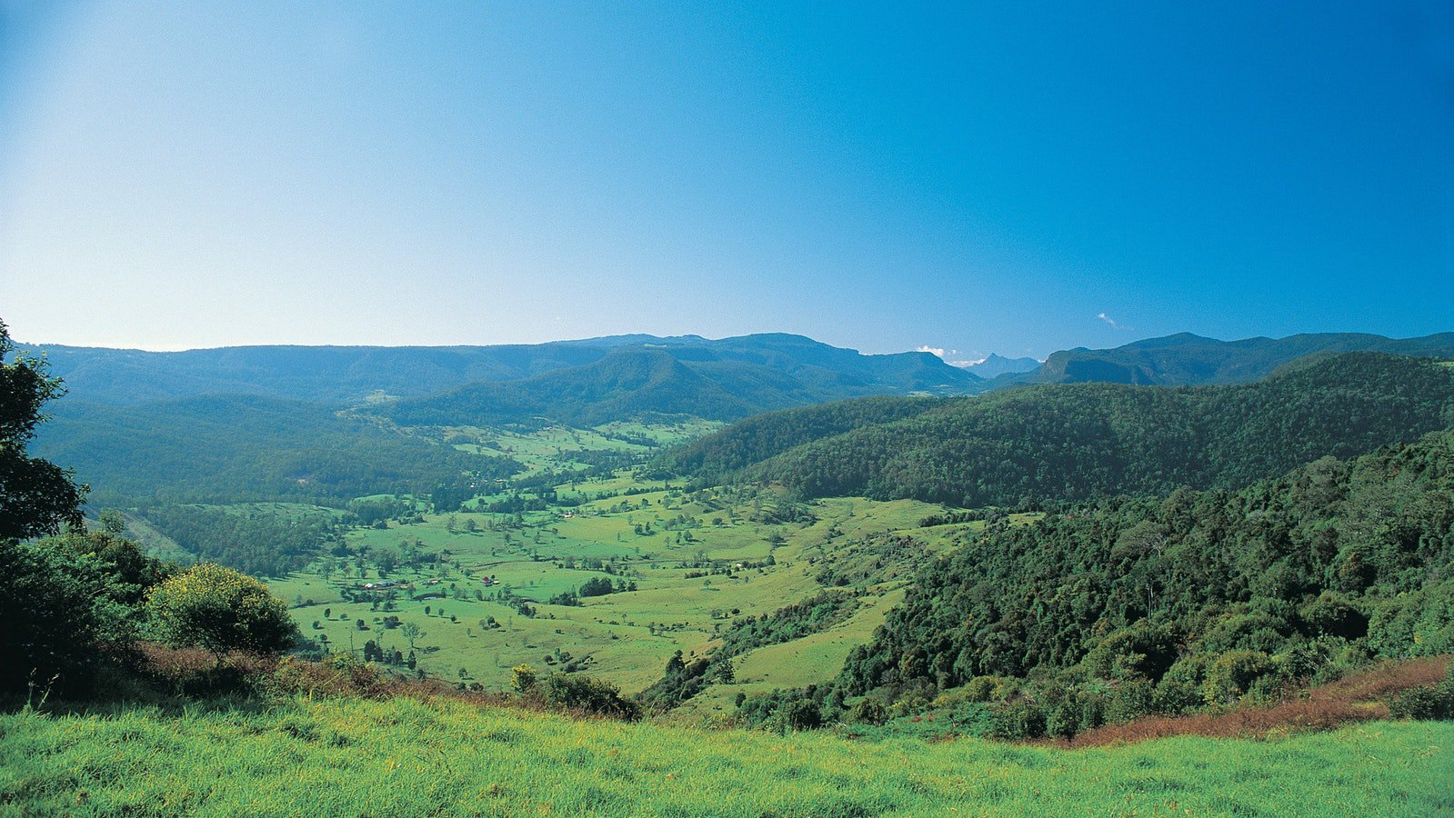 The Springbrook Plateau with Mount Warning off in the Distance. The Gold Coast Hinterland is a stunning combination of rainforest, rolling green hills, mountains and rivers.