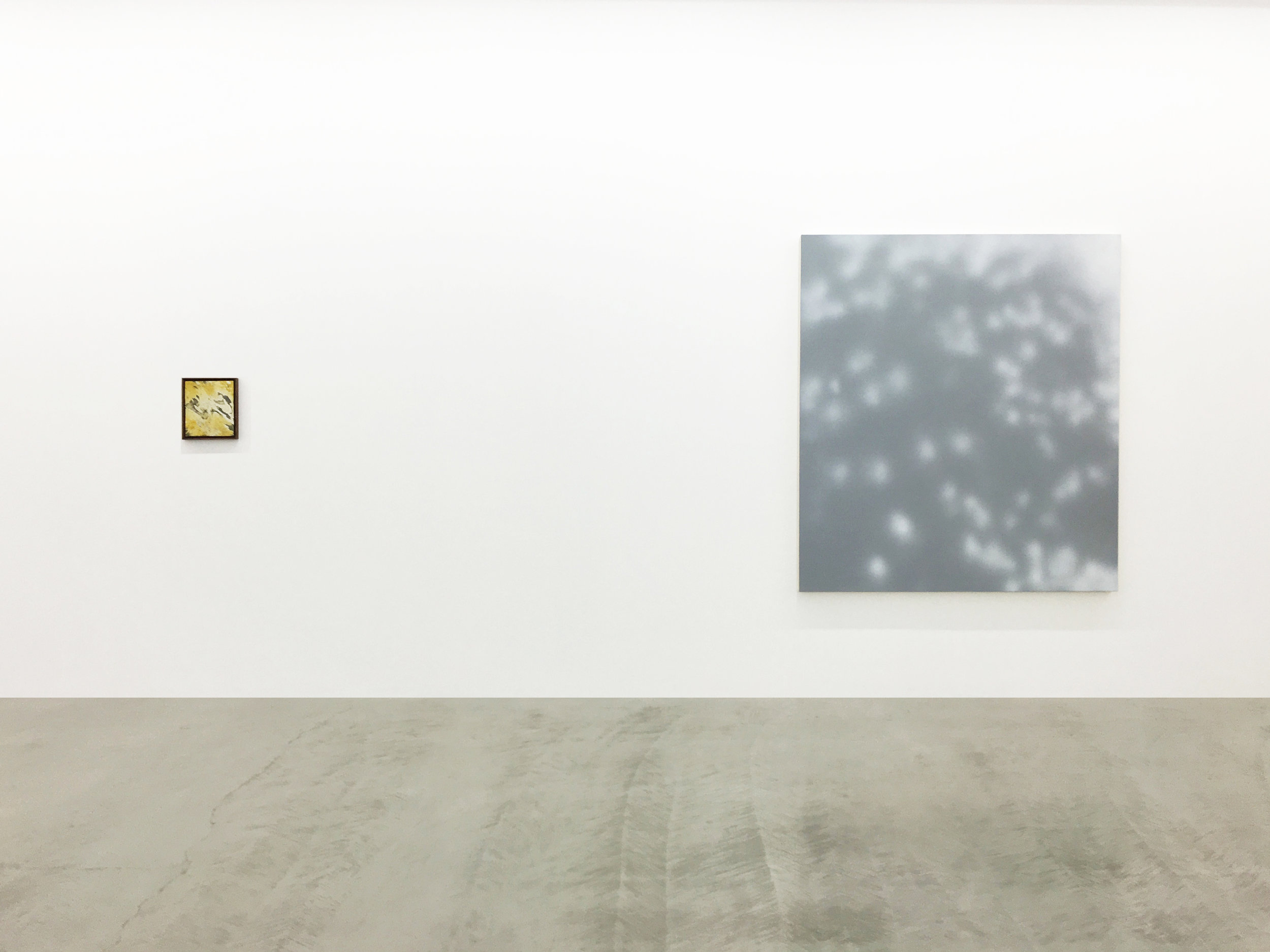 Installation view of James Case Leal paintings depicting plant shadows