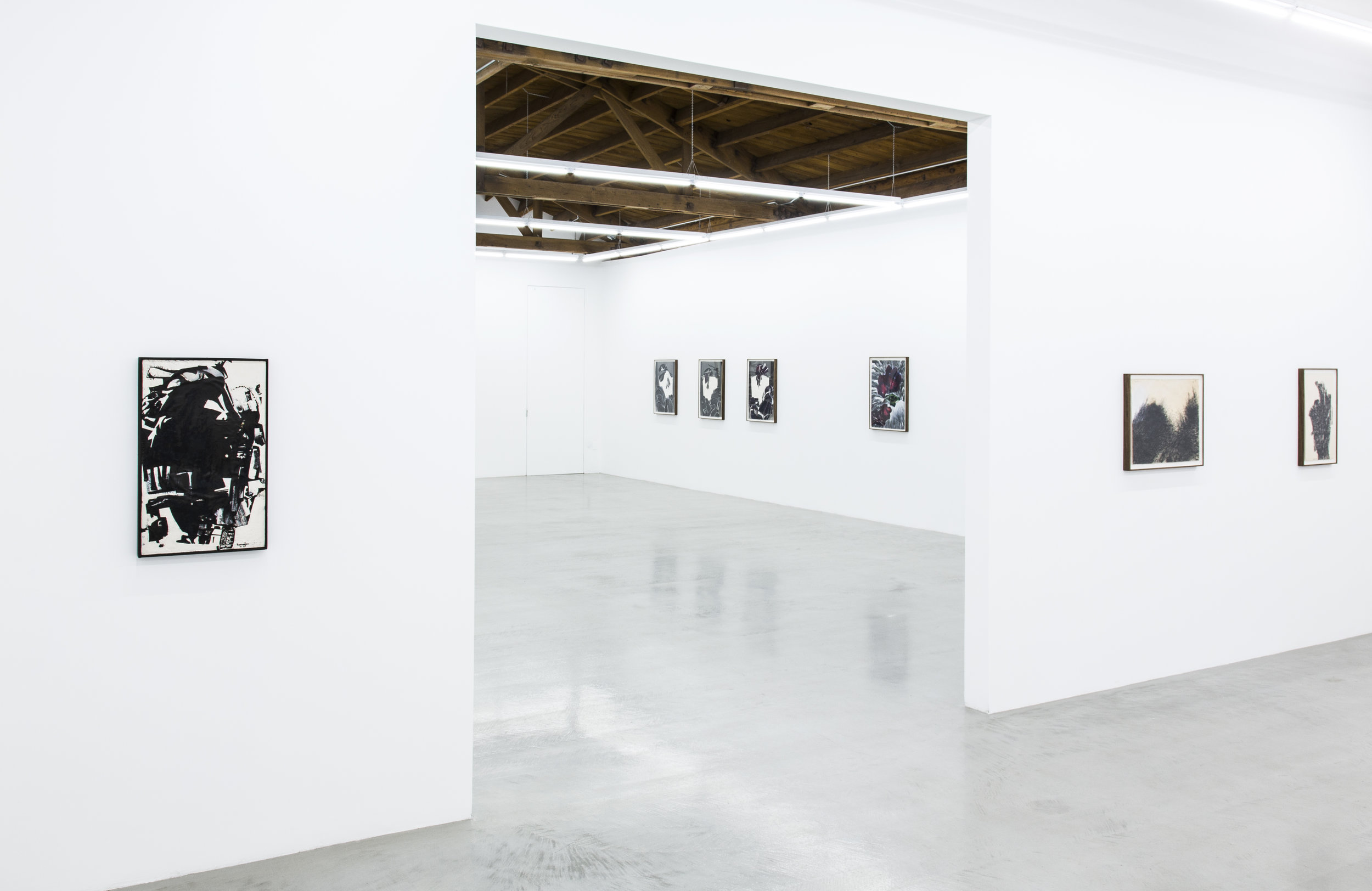 Installation view of Deborah Remington's works on paper