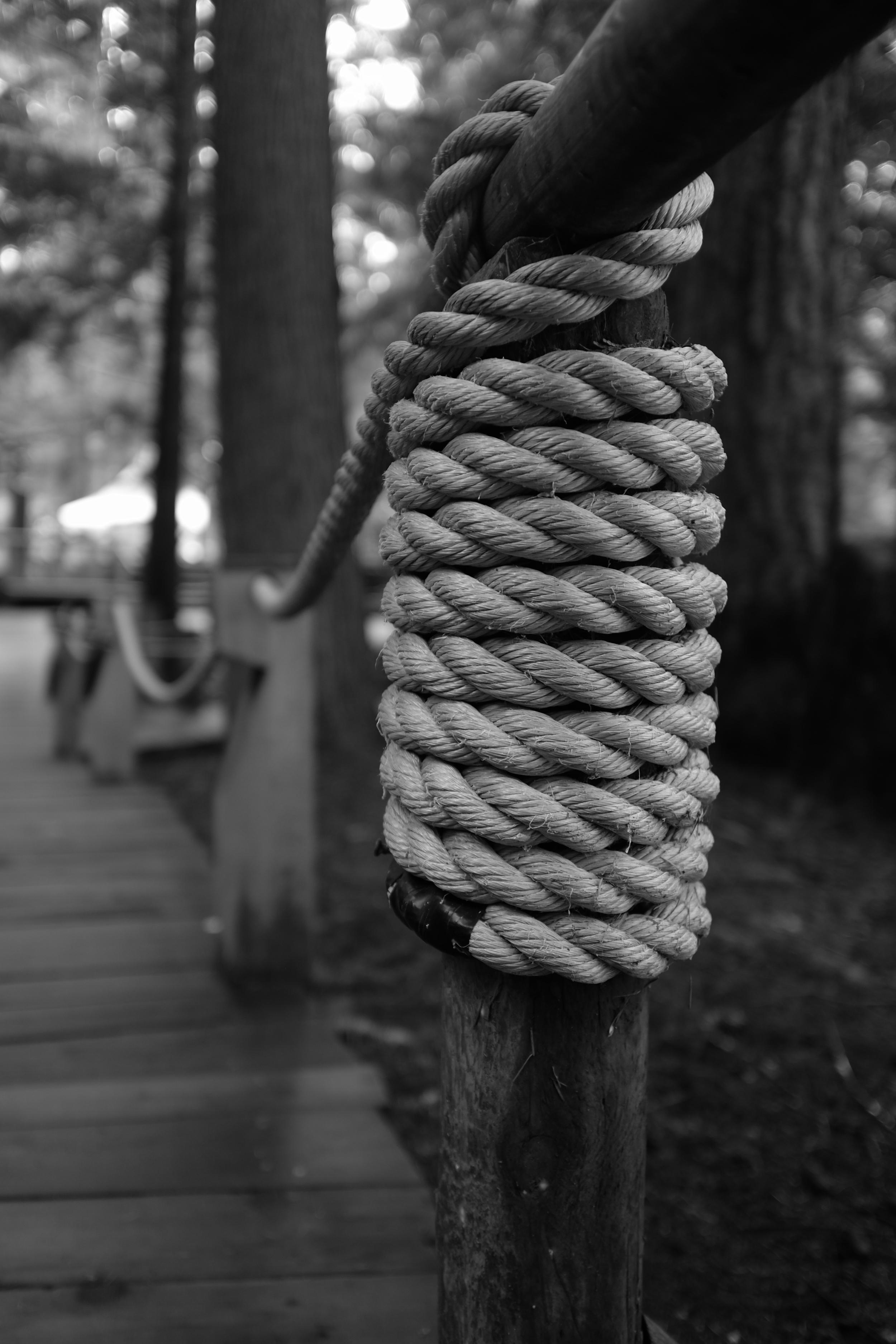 Rope Fence.JPG