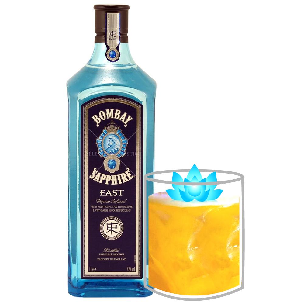 Annapurna-Zing-Cocktail-Tiffins-Animal-Kingdom.jpg